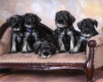 Jordan Litter; photo by Laurie J. Erickson